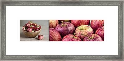 Apples 02 Framed Print by Nailia Schwarz