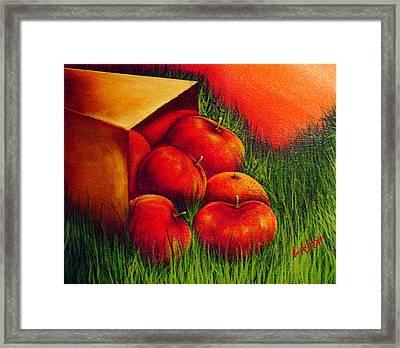 Apples At Sunset Framed Print