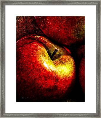Apples  Framed Print by Bob Orsillo
