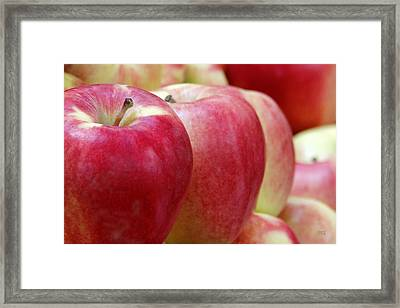 Apples For Sale Framed Print by Ben and Raisa Gertsberg