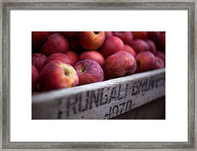 Apples Framed Print by June Marie Sobrito