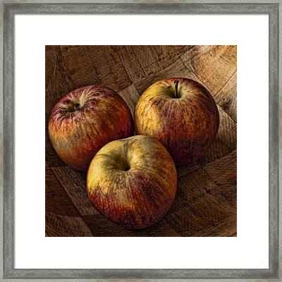 Apples Framed Print by Steve Purnell