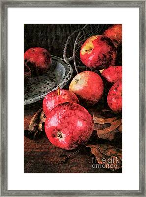 Apples Still Life Cezanne Style Framed Print