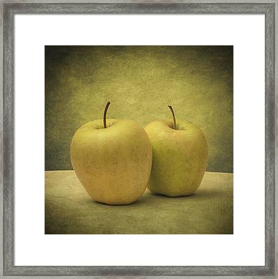 Apples Framed Print by Taylan Apukovska
