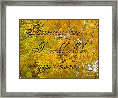 Framed Print featuring the photograph Appreciate Now by Heidi Manly