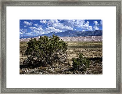Approaching Great Sand Dunes #1 Framed Print