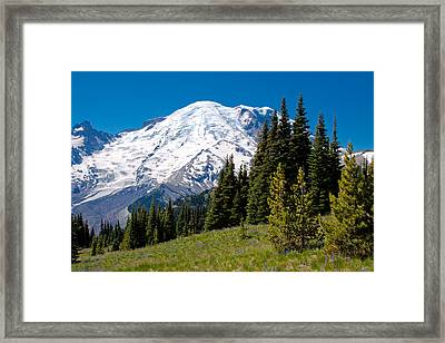 Approaching Mount Rainier Framed Print by David Patterson