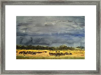 Approaching Storms In Tarangire Tanzania Framed Print by James Nyika