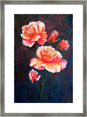 Apricot Rose Framed Print