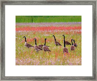 Good Friday Morning Framed Print