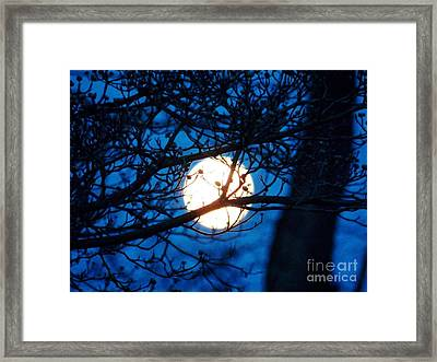 April Morning Moon Framed Print by Judy Via-Wolff