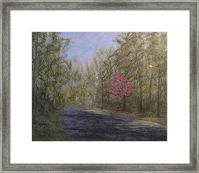 April Showers And Flowers Framed Print
