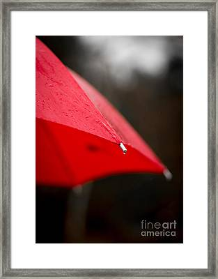 April Showers Bring May Flowers Framed Print by Edward Fielding