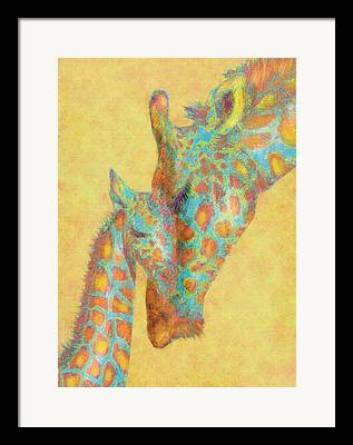 Giraffe Digital Art Framed Prints