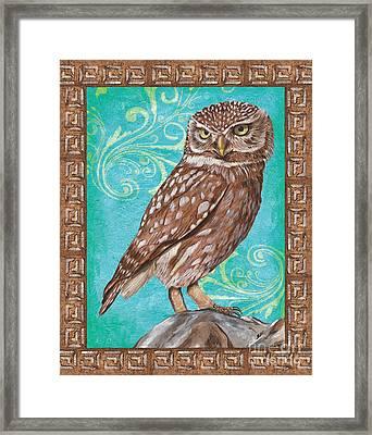 Aqua Barn Owl Framed Print by Debbie DeWitt