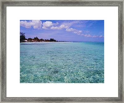 Aqua Blue Framed Print by Carey Chen