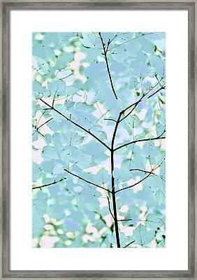 Aqua Blues Greens Leaves Melody Framed Print by Jennie Marie Schell