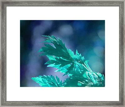 Aqua Dreams  Framed Print by First Star Art