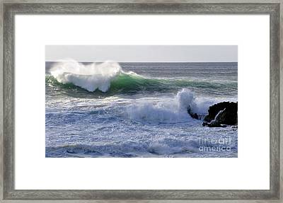 Framed Print featuring the photograph Aqua Mist by Gina Savage
