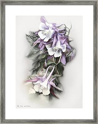 Aqualigia Cascade Framed Print by Bonnie Willis