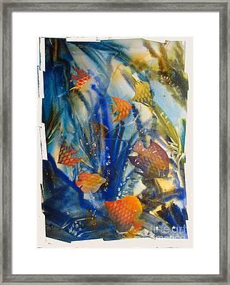 Aquarium 2 Archived Work Framed Print by Charlie Spear