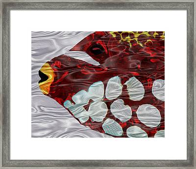 Aquarium 3 Framed Print by Jack Zulli