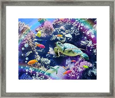 Aquarium Framed Print by Alixandra Mullins