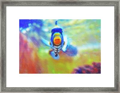 Aquarium Art 18 Framed Print by Steve Ohlsen