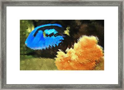 Aquarium Art 2 Framed Print by Steve Ohlsen