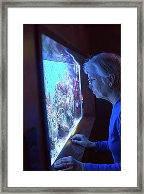 Aquarium Of Niagara Framed Print by Jim West