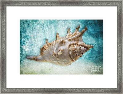 Aquatic Dreams I Framed Print by George Oze