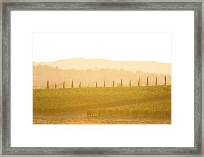 Aquaviva Sunset Framed Print by Clint Brewer