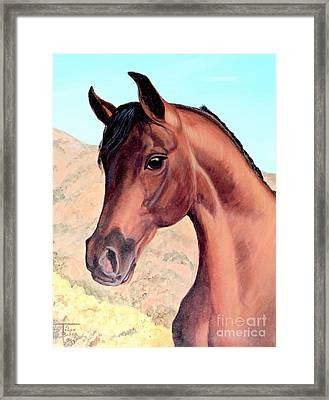 Arabian Beauty Framed Print