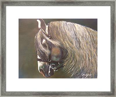 Arabian Beauty Framed Print by Jean Yves Crispo