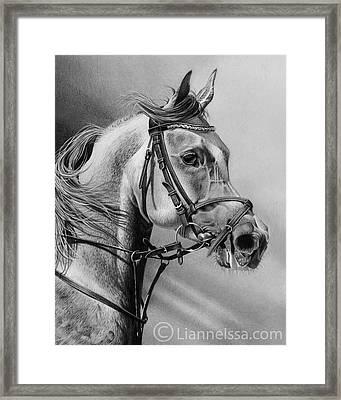 Arabian Drawing Framed Print