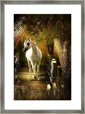 Arabian Dream Framed Print