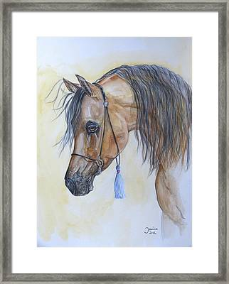 Arabian Head Framed Print by Janina  Suuronen