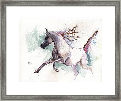 Arabian Horse 2014 10 26 Framed Print by Angel  Tarantella