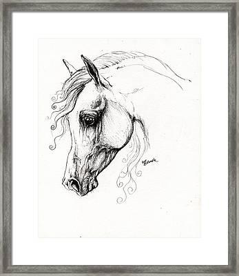Arabian Horse Drawing 15 Framed Print by Angel  Tarantella