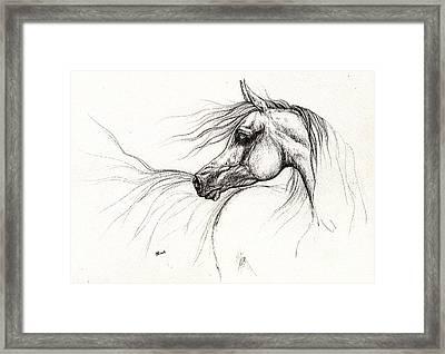 Arabian Horse Drawing 2013 09 13 Framed Print by Angel  Tarantella