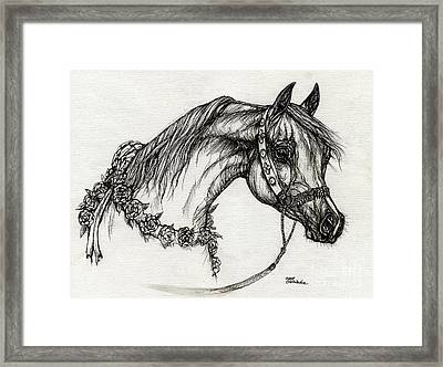 Arabian Horse Drawing 22 Framed Print by Angel  Tarantella