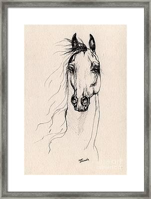 Arabian Horse Drawing 25 Framed Print by Angel  Tarantella