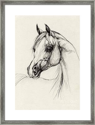 Arabian Horse Drawing 27 Framed Print by Angel  Tarantella