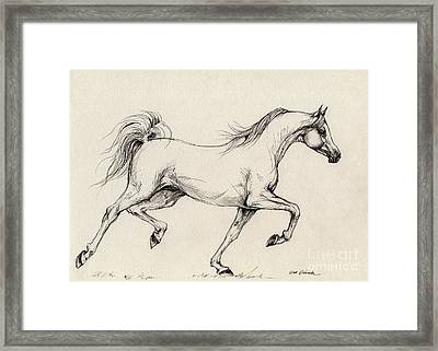 Arabian Horse Drawing 31 Framed Print by Angel  Tarantella