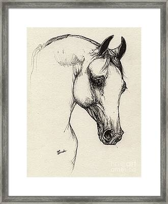 Arabian Horse Drawing 32 Framed Print by Angel  Tarantella