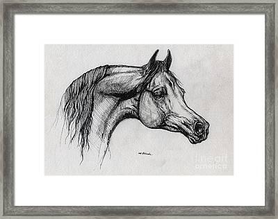 Arabian Horse Drawing 40 Framed Print by Angel  Tarantella
