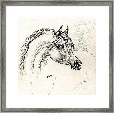 Arabian Horse Drawing A 18 10 2013 Framed Print by Angel  Tarantella