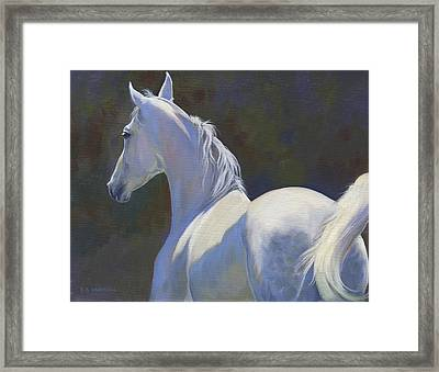 Arabian Light Framed Print