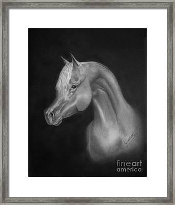 Arabian Night Framed Print by Lissa Rachelle