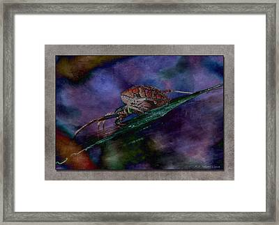 Arachnophobia IIi Framed Print